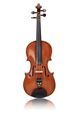 Geige isoliert