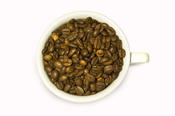 Coffee Beans in the white cup