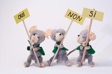 Les trois manifestants