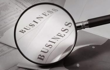 enlarge business