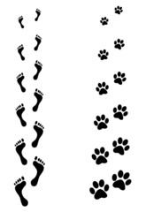 human and animal steps print illustration