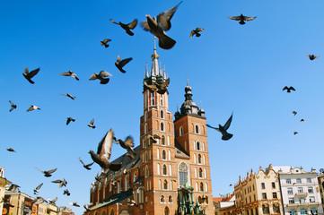 Autocollant pour porte Cracovie Church and the pigeons. Krakow