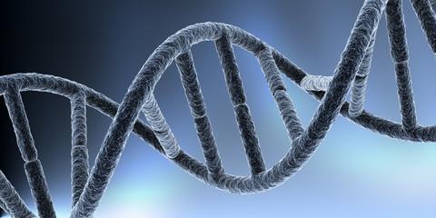 DNA III