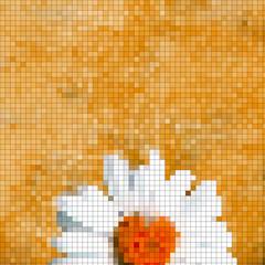 Fotobehang Pixel fondo margarita mosaicos