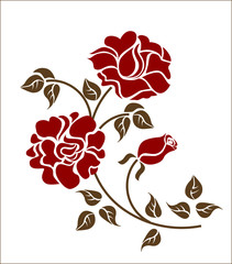 red roses over white background