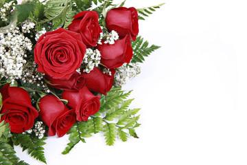 Red Roses on White
