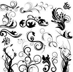 Fototapete - Vector floral set