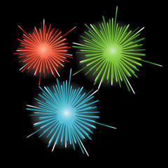 Firework in honor of Independence Day. Vector Illustration