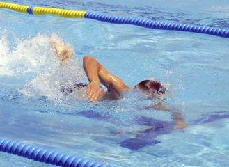 Campeonatos de natación 3