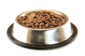 dog or cat food in bowl