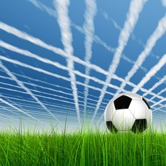 3d leather black and white soccer ball on green grass