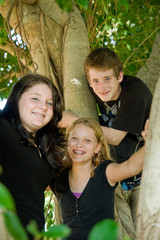 smiling teens high up in a tree