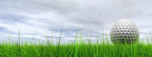 Poster Golf High resolution 3d white golf ball in green grass background