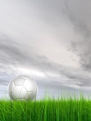 High resolution 3d soccer ball on green grass