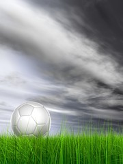 High resolution 3d soccer ball on green grass