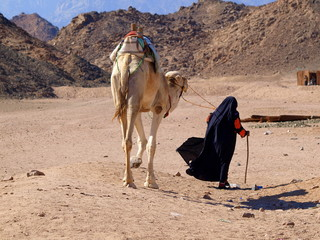 Reisen in der Wüste
