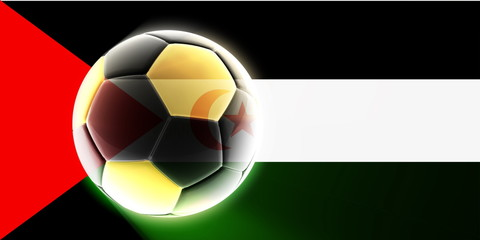 Flag of Western Sahara soccer