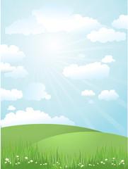 landscape on a sunny day