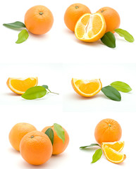 Isolated orange collection