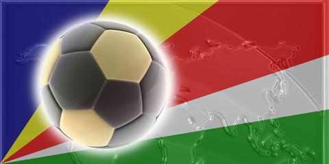 Flag of Seychelles soccer