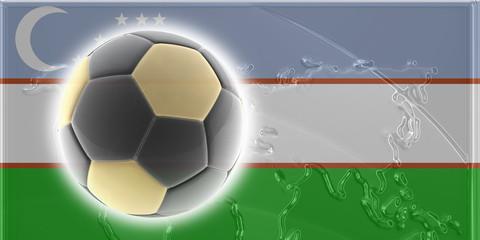 Flag of Uzbekistan soccer