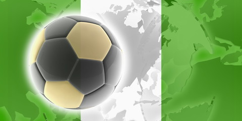 Flag of Nigeria soccer