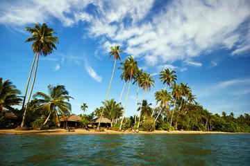 Tropical beach under blue sky. Thailand