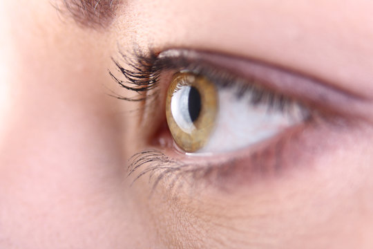 Beautiful blrown eye close up