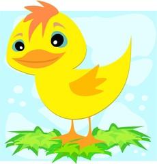 Duck on Leaves