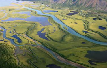 Green arctic delta