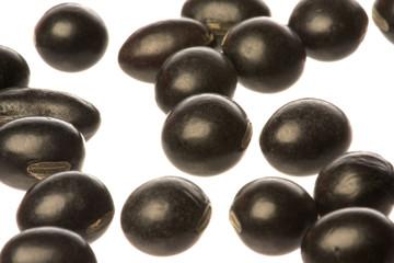Organic Black Beans Macro Isolated
