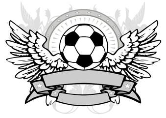 flying soccerball 2