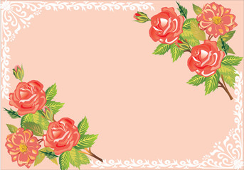 red rose frame pattern on pink