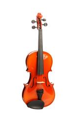 Violin on white