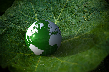 3d green globe on a leave