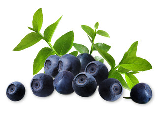 blueberry_arrangement_2