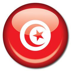 Chapa bandera Tunez