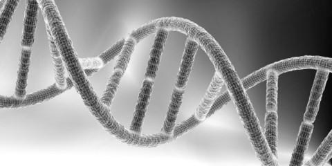 DNA IV
