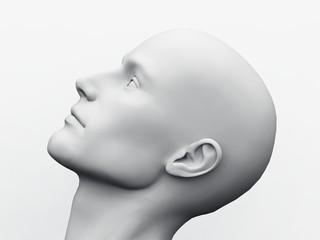 White Male Head - 55