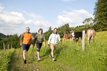 Fototapete - Walking-Gruppe im Frühjahr