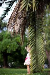 girl with a palm leaf