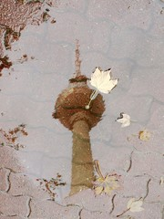 tv tower in fall