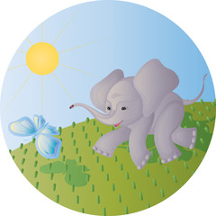 The elephant calf and the butterfly
