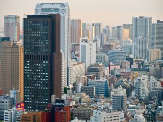 Tokyo, Copyright Sigmar Schnur