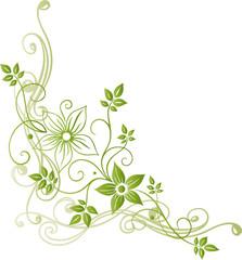 Frühling, Blumen, Blüten, Ranke, flowers, floral