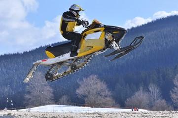 Wall Mural - snowmobile