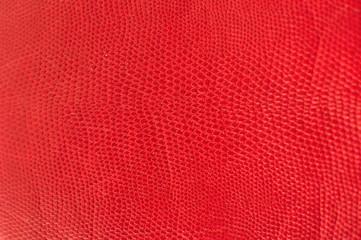 Photo sur Plexiglas Cuir rote schlangenhaut