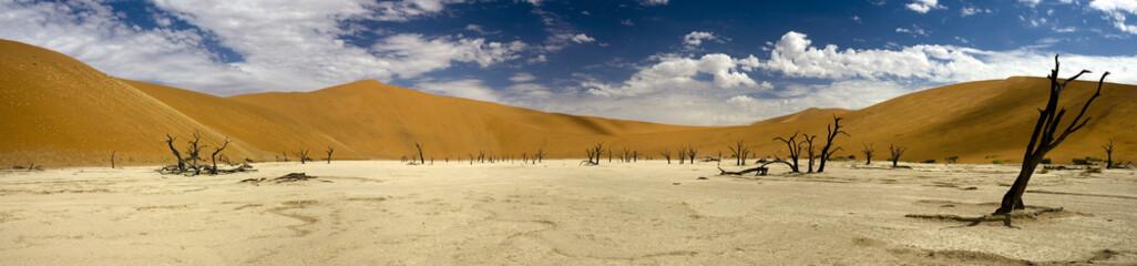 Panoramaaufnahme des Dead Vlei, Namib Wüste