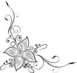 Große Blüte, Blumen, Lilie, Blüte, Ranke, filigran, floral