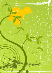 spring grunge floral background
